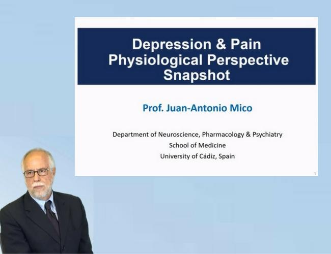 Depression & Pain Physiological Perspective Snapshot