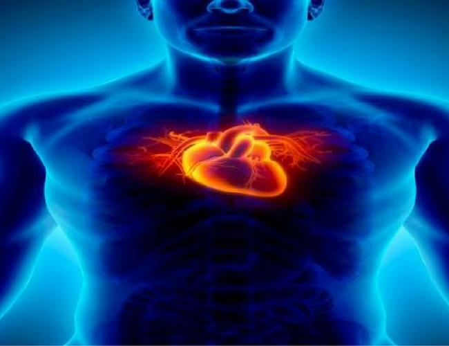 Cardiovascular Diseases and Practical Lifestyle Modifications